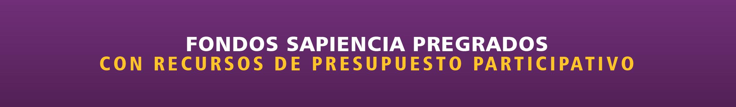 banner-fondo-sapiencia-pregrados-pp